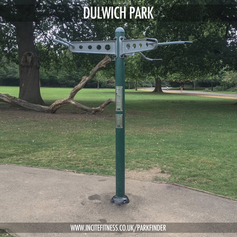 Dulwich park 01 pull up bars.jpg