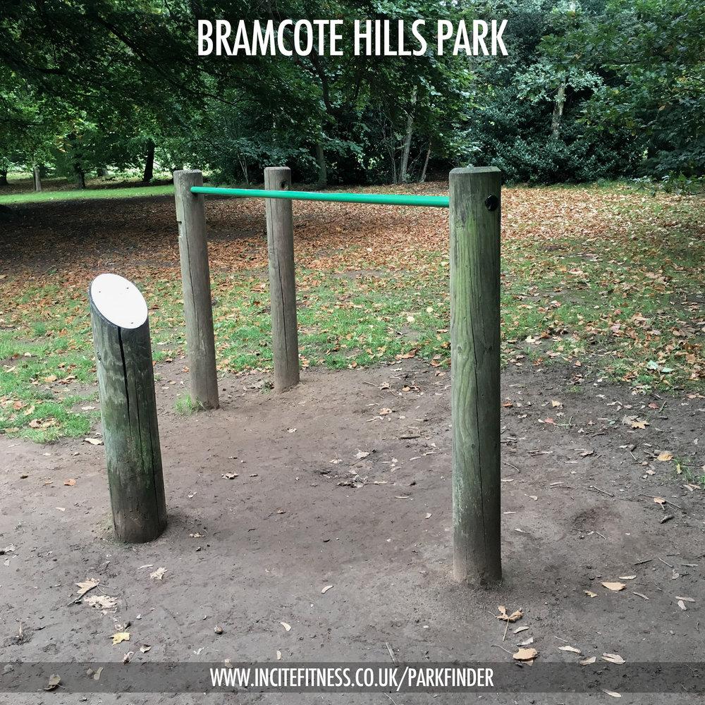 Bramcote Hills 01 dip bars.jpg