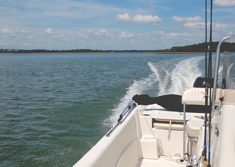 SM_boats.jpg