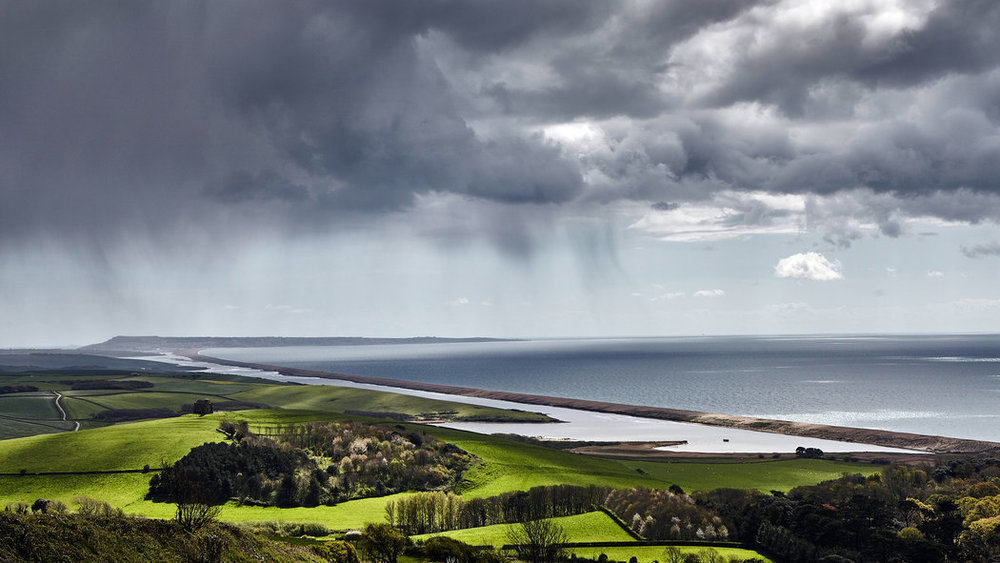 lately: dreaming (and scheming) of Dorset. | image Andy Haslam for The New York Times