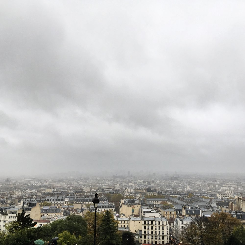View overlooking Paris on a cloudy day.