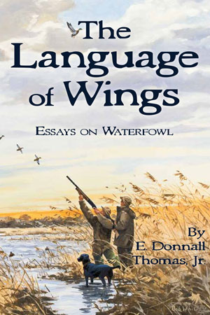 language-of-wings.jpg