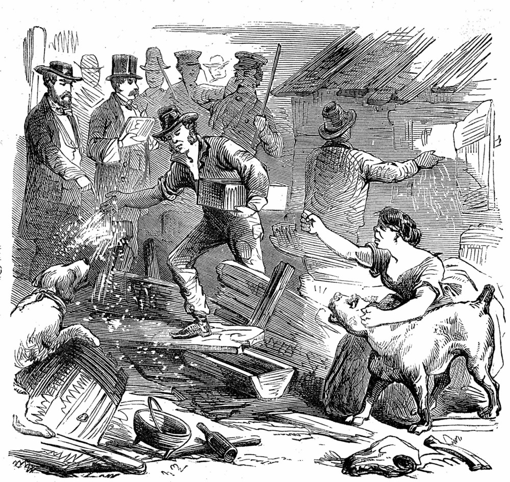 Figure 2: A piggery owner raises her fist as officials sprinkle lime over her destroyed property in an effort to disinfect it and mitigate the odors.  Frank Leslie's Illustrated Newspaper,  August 13, 1859.