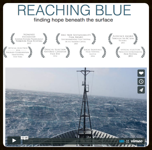 Reaching Blue,  a documentary film from the Salish Sea