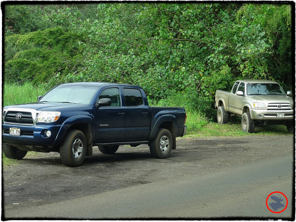 Blog Post_Toyotas in Kauai_2_April 2014.jpg