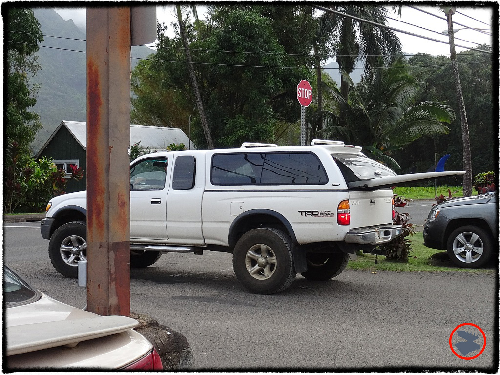 Blog Post_Toyotas in Kauai_5_April 2014.jpg