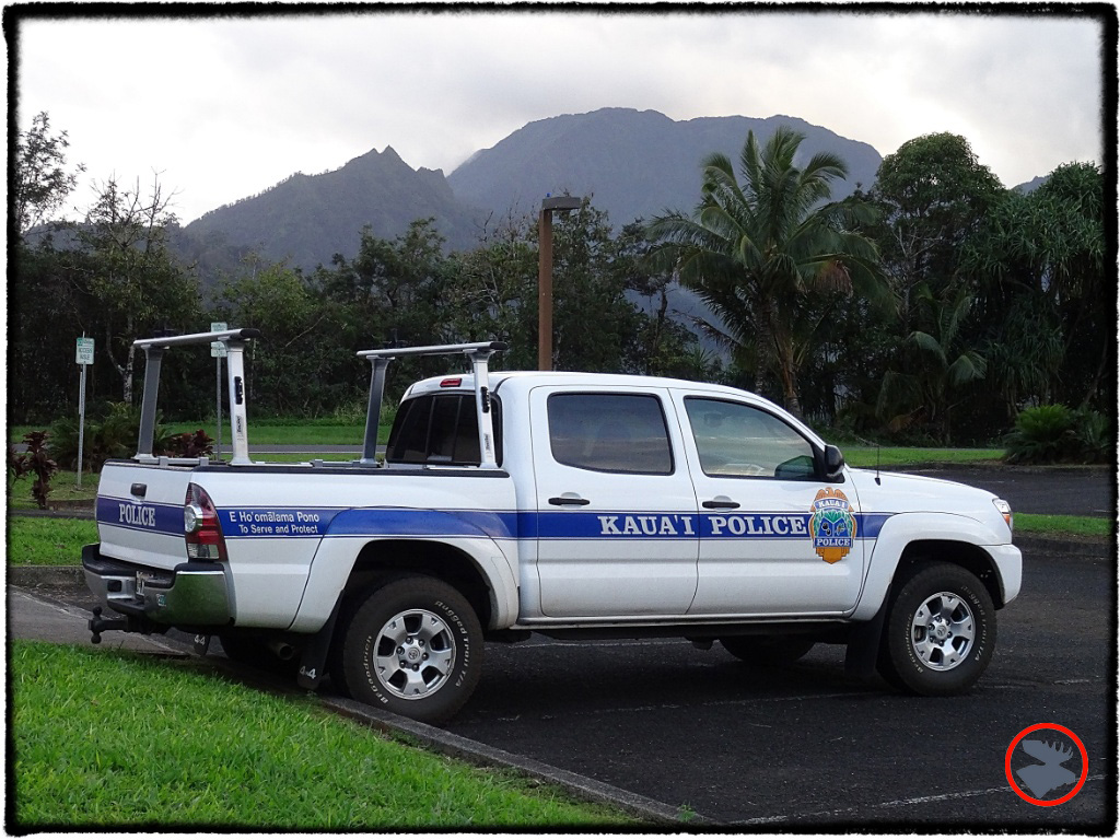 Blog Post_Toyotas in Kauai_6_April 2014.jpg