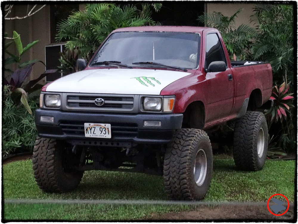 Blog Post_Toyotas in Kauai_7_April 2014.jpg