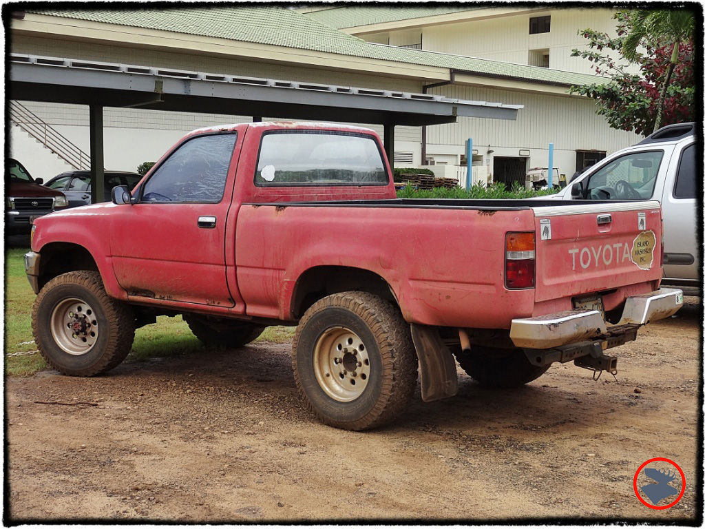 Blog Post_Toyotas in Kauai_9_April 2014.jpg