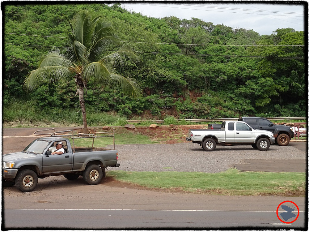 Blog Post_Toyotas in Kauai_12_April 2014.jpg