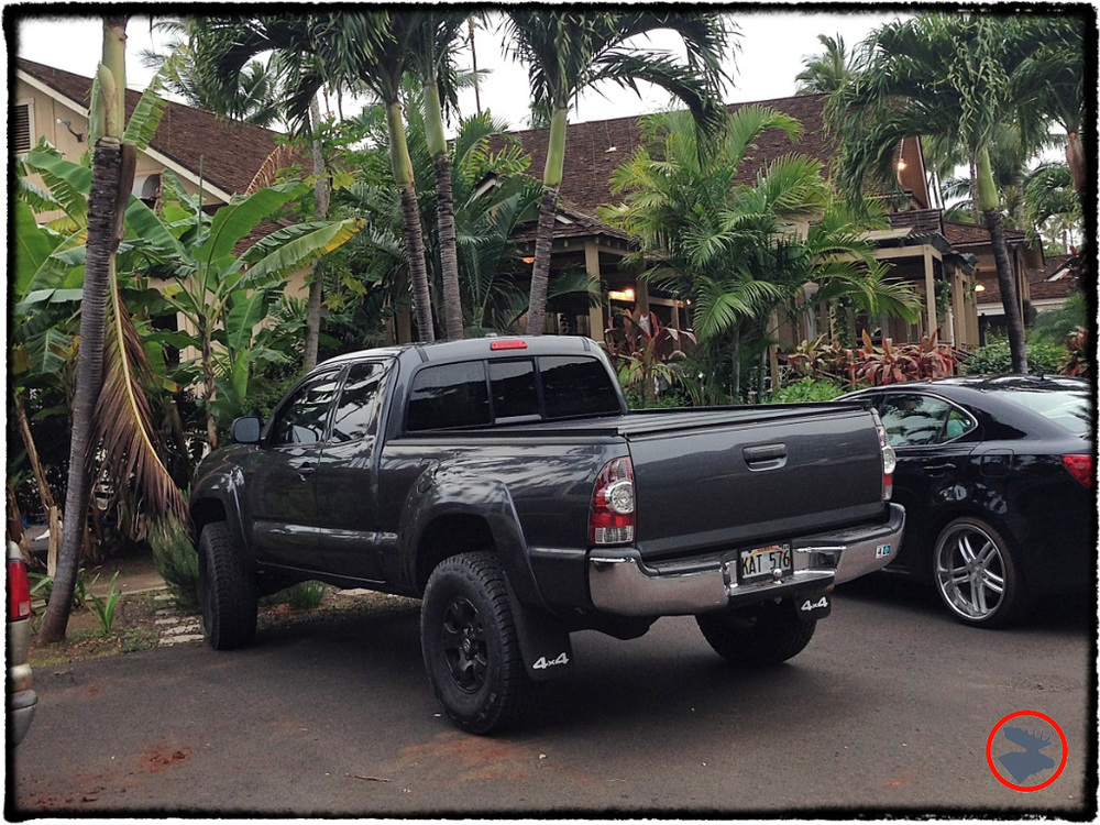 Blog Post_Toyotas in Kauai_16_April 2014.jpg