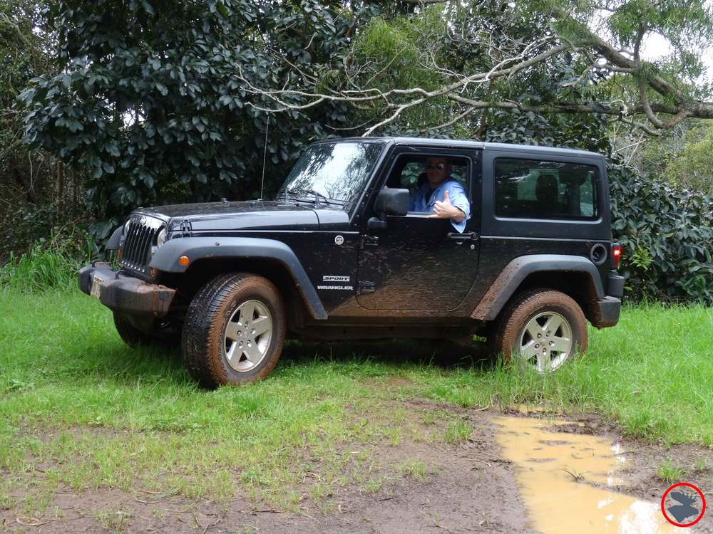 Jeep-in-Waimea.jpg