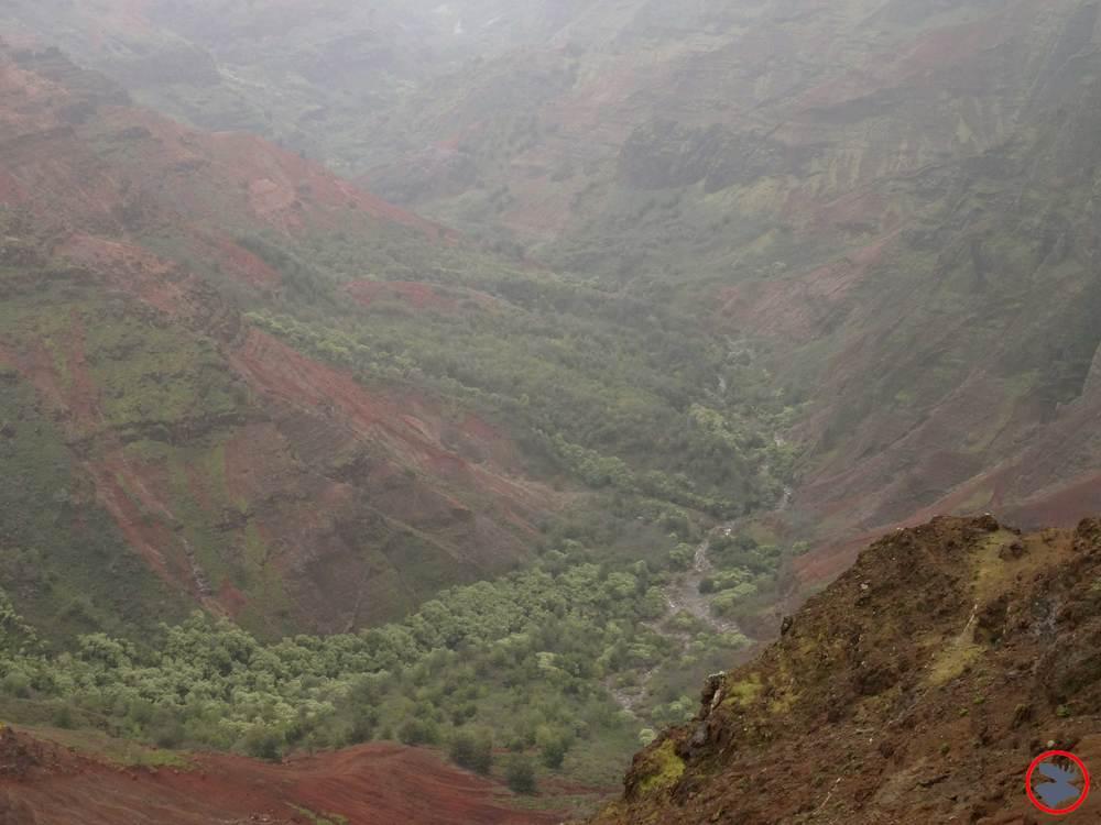 Waimea-Canyon2.jpg