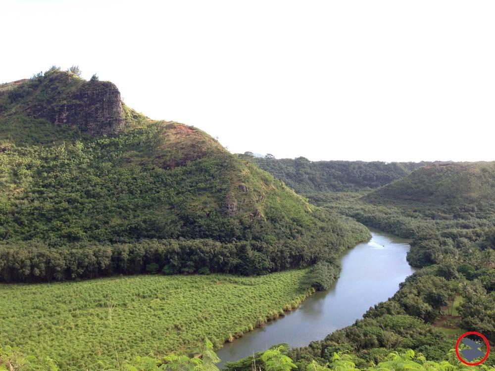Wailua-River.jpg
