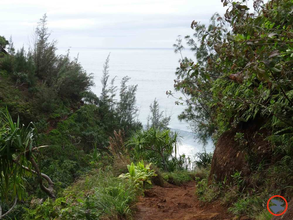 Kalalau-Trail-on-Napali-Coast4.jpg