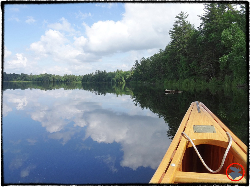 Lost Canoe Lake in Wisconsin offers a scenic paddle and an incredible amount of wildlife.