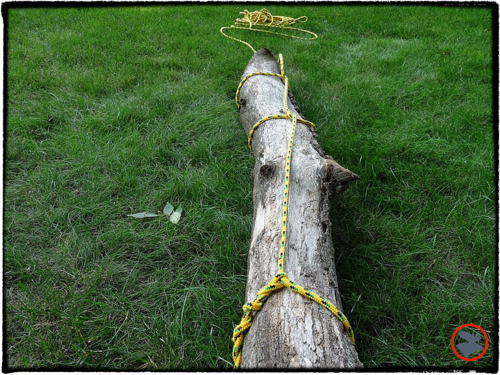 BMP-Post_Bootcamp_Timber-Hitch_Downed-Log_August-2014.jpg