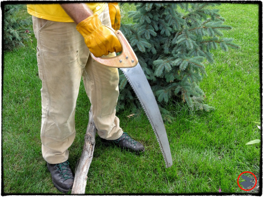 The Fiskars D-handle pruning saw is a surprisingly sturdy, useful, and dependable saw to have in your pack.