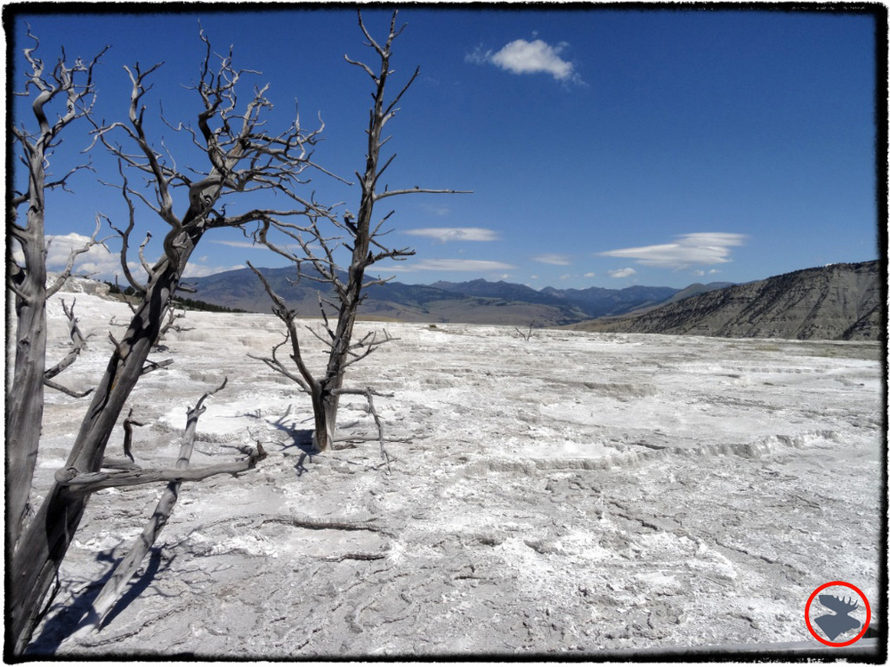 BMP-Post_Expedition-Log_Yellowstone_Mammoth-Hot-Springs3_October-2014.jpg