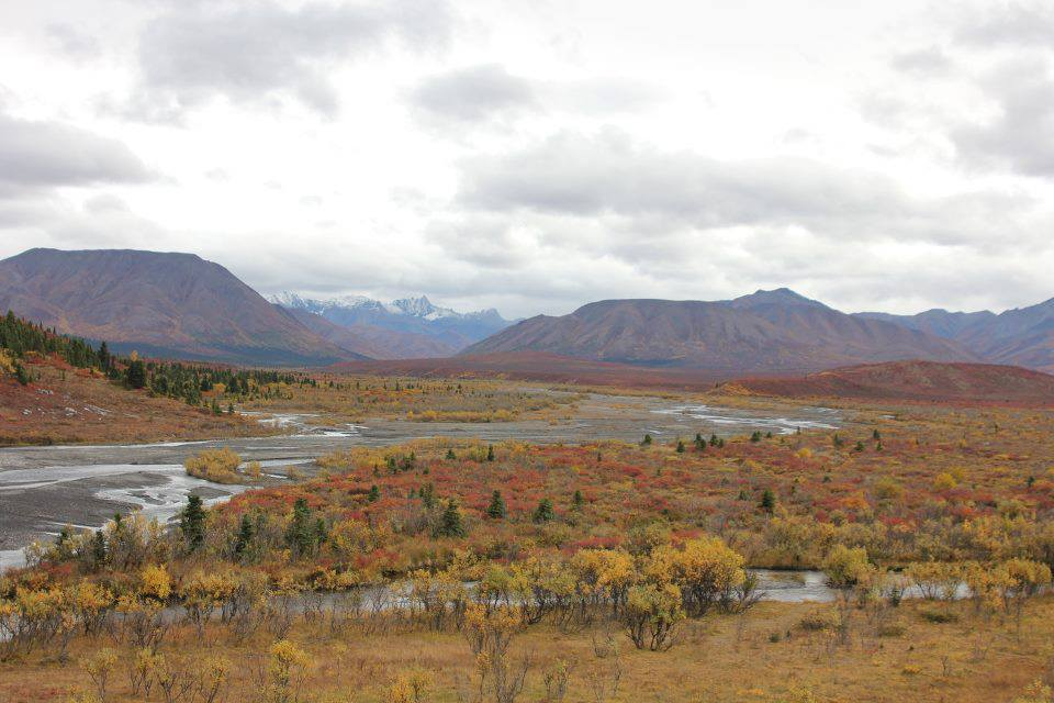 BMP Post_Expedition Log_Denali_Fall Mts River_October 2014.jpg