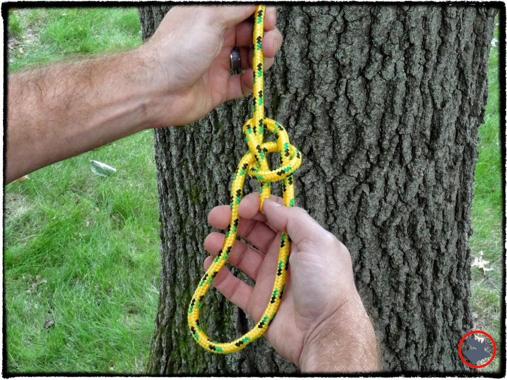 The versatile bowline knot.
