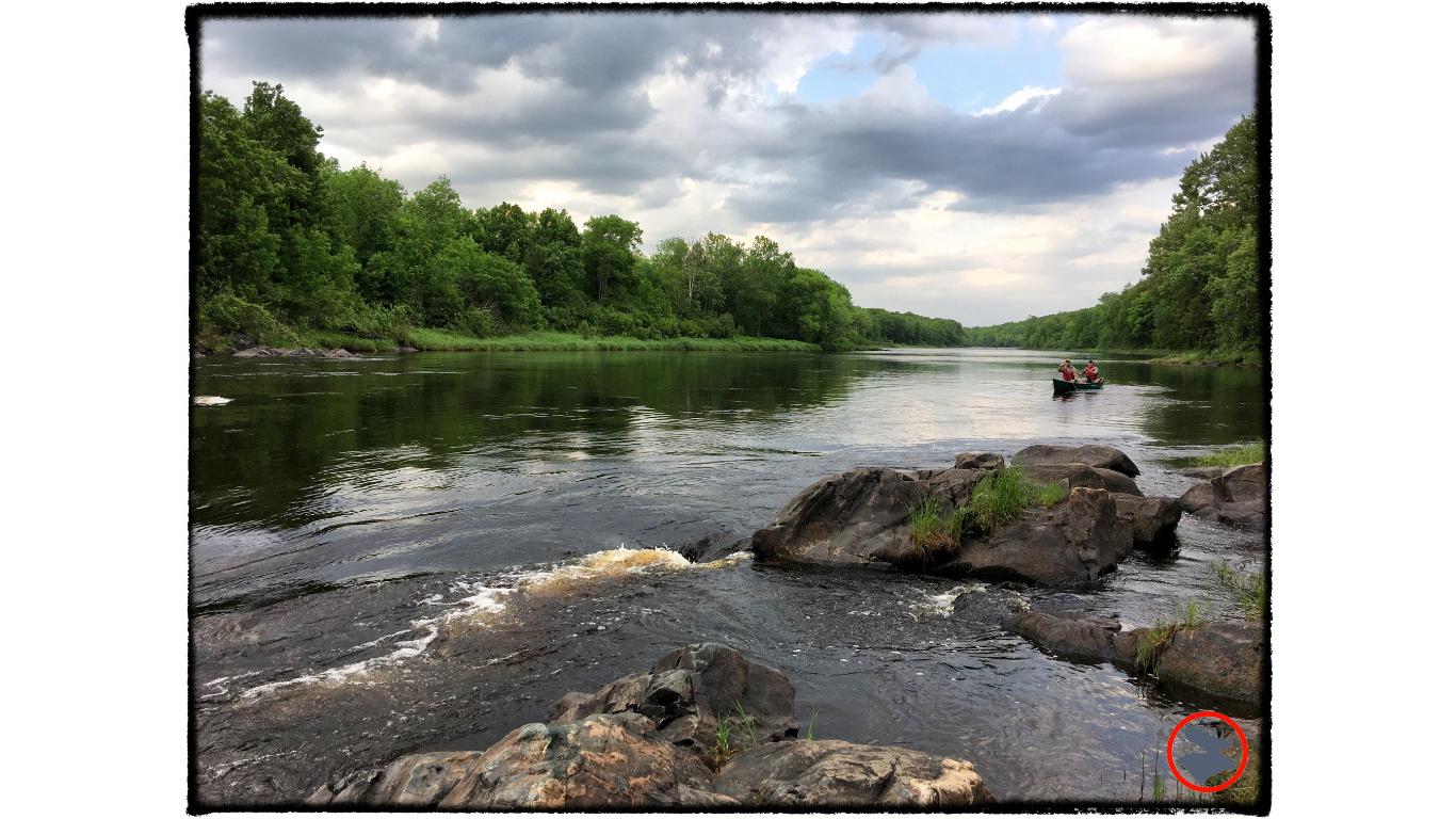 Paddling Wisconsin's Flambeau River — Bull Moose Patrol