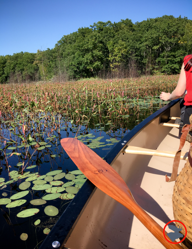 BMP-Post_Expedition-Log_Loyhead-Canoe-Route_Paddling2_9-10-17.jpg