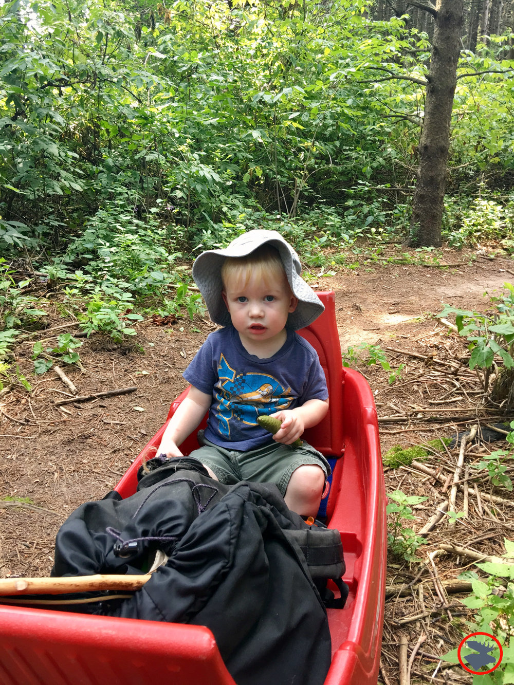 BMP Post_Expedition Log_Backpacking with Toddlers_Wagon1(W)_June 2018.jpg