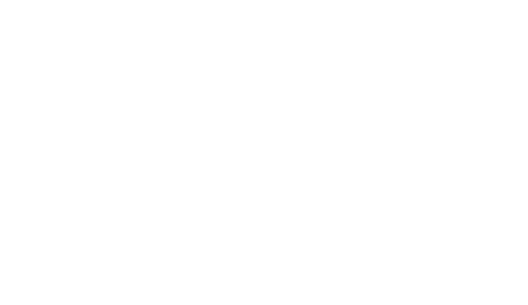 Cammy Cook