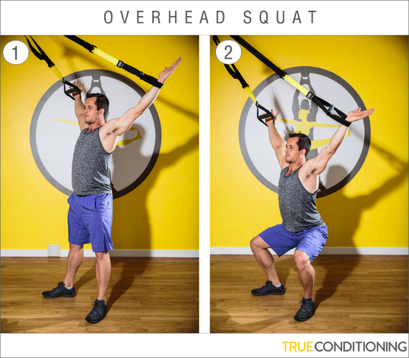 Fitness Bands Vancouver: TRX Exercise Series #5