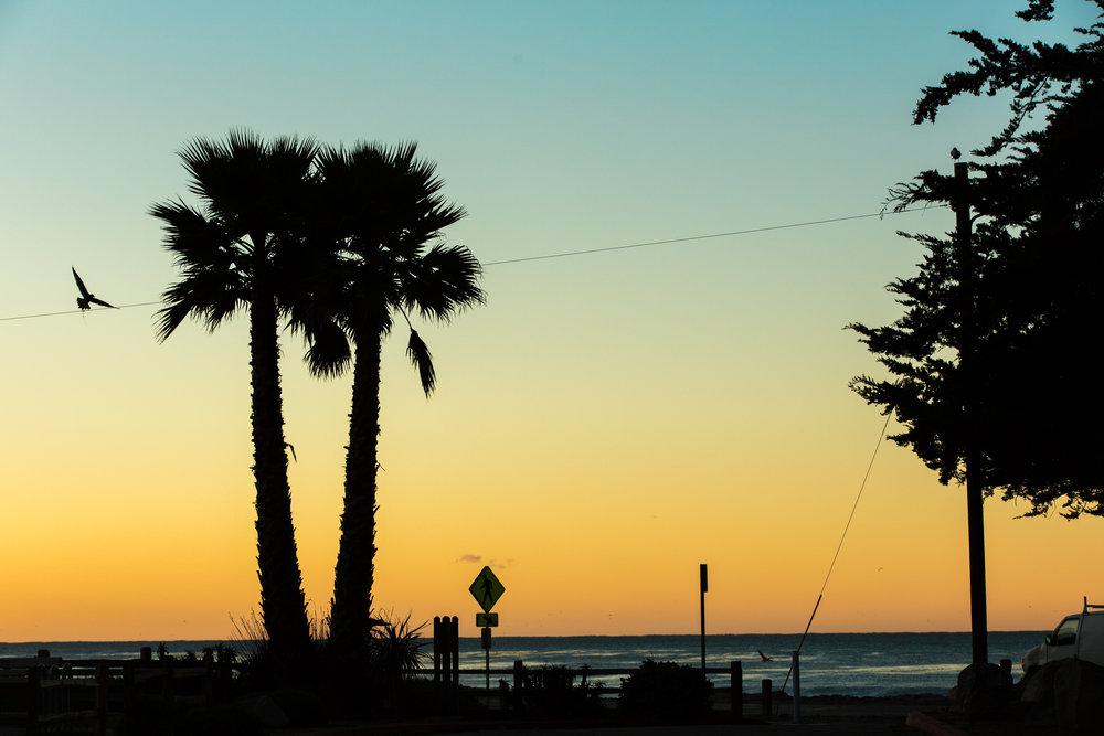TS - Santa Cruz Sunrise, early bird gets the worm.jpg