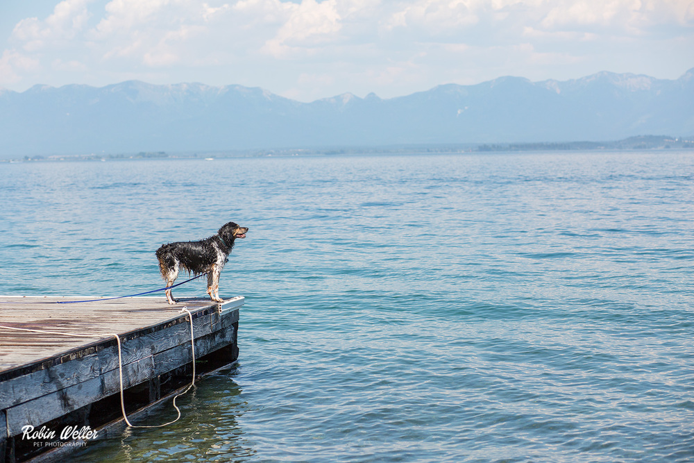 2015-06-28-Molly_Flathead-Lake_2.jpg