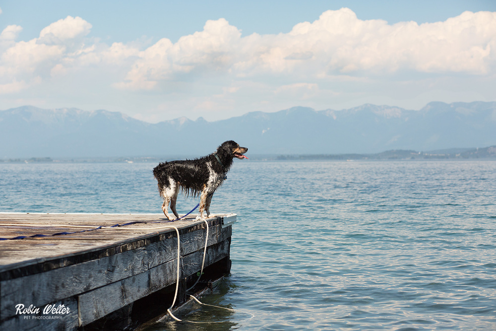 2015-06-28-Molly_Flathead-Lake_3.jpg