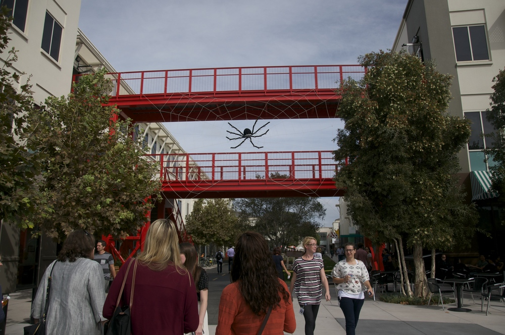 "It's ""Hacktober"" at Facebook, and apparently this spider is the campus mascot."