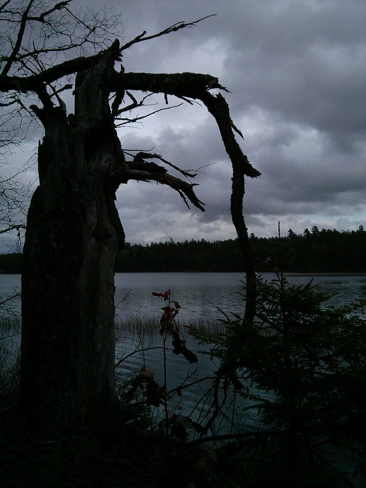 CLOC Trail - lake.jpg
