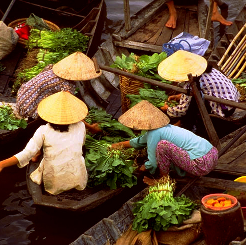 Cai Rang, Vietnam 1.jpg