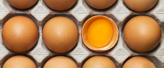 Eggs 1.jpg