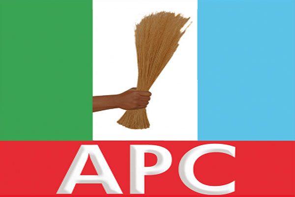 Heroshe-shop-in-the-us-from-nigeria-apc-jonathan-goodluck-pdp-2015-elections.jpg