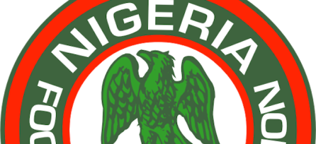Heroshe-shop-in-the-us-from-nigeria-sports-Super-Eagles-fifa-world-cup-us-camping-2014-new-budget-nigeria-football-asso.png
