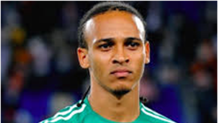 Heroshe-shop-in-the-us-from-nigeria-news-nigerian-newspapers-sports-peter-odemwingie-world-cup-brazil-2014.png