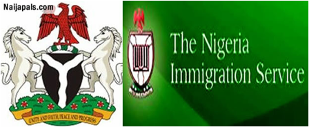 Heroshe-shop-in-the-us-from-nigeria-news-nigerian-newspapers-politics-nigerian-immigration-services-ministry-of-interior-abba-moro-parradang-recruitment.png