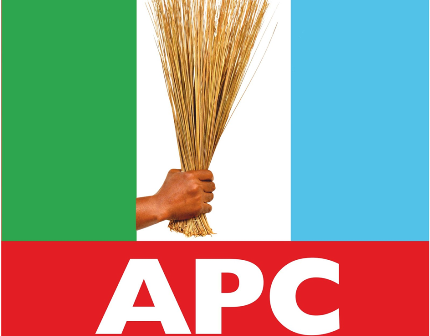 Heroshe-shop-in-the-us-from-nigeria-news-nigerian-newspapers-politics-anambra-state-elections-gubernatorial-candidate-apc.png