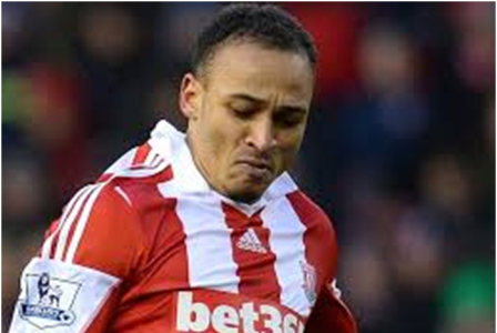 heroshe-shop-in-the-us-from-nigeria-news-nigerian-newspapers-sports-peter-odemwingie-stoke-city-green-eagles-world-cup.png