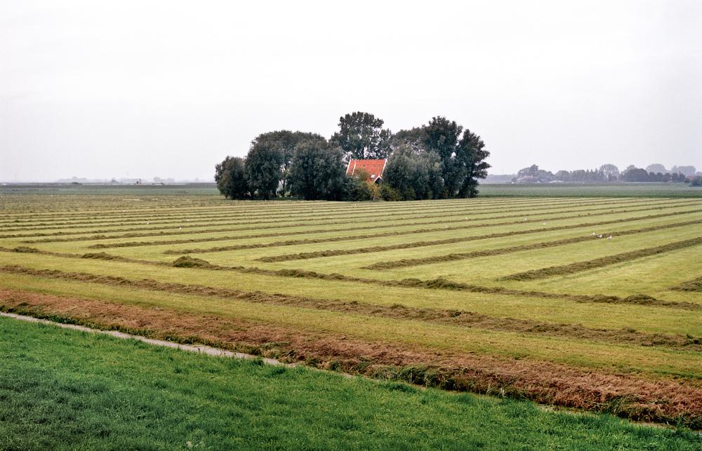 Boerderij in maaiveld, Noordeinde