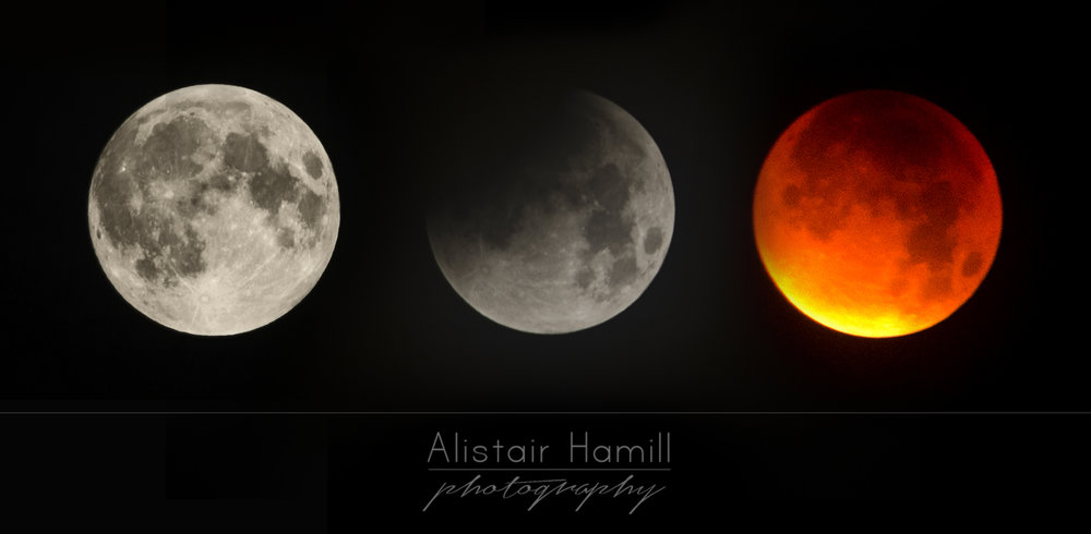 A montage of some of the shots I got during 2015's lunar eclipse, when the moon turned red.