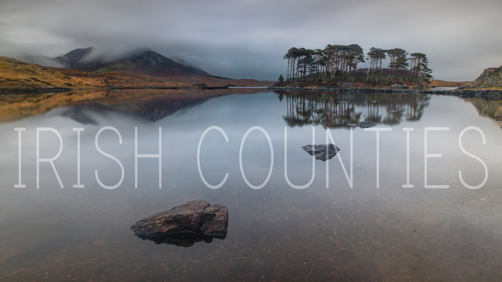 Irish counties website banner.jpg