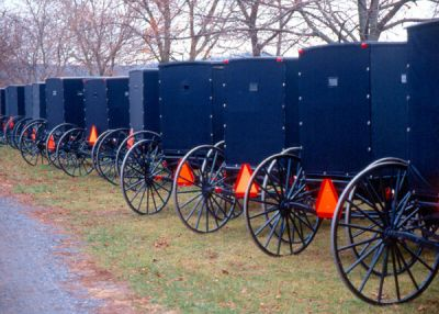 Amish Buggies 002