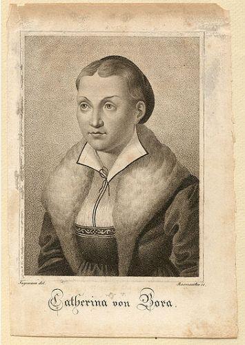 KatieLuther