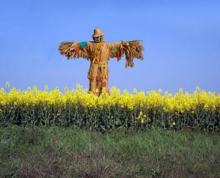 scarecrow2 usermyth