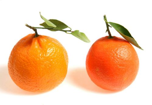 two oranges 636